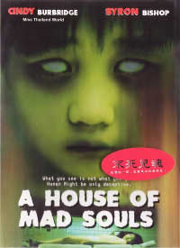 A House of Mad Souls 2003